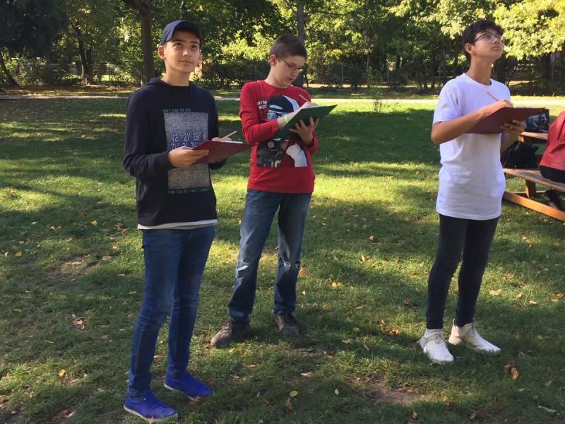 Baumbestimmung im Park