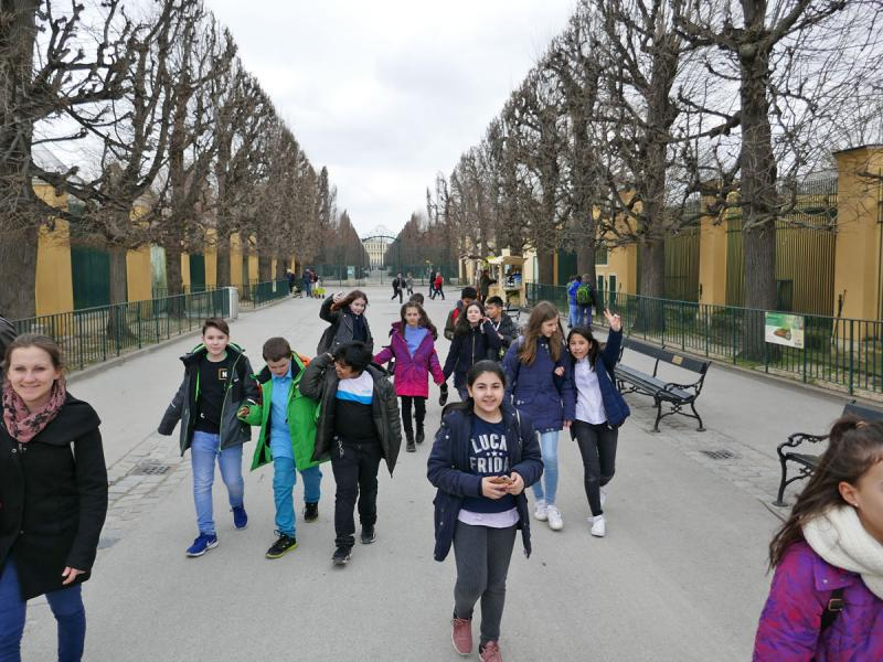 Säugetier-Exkursion Tiergarten Schönbrunn