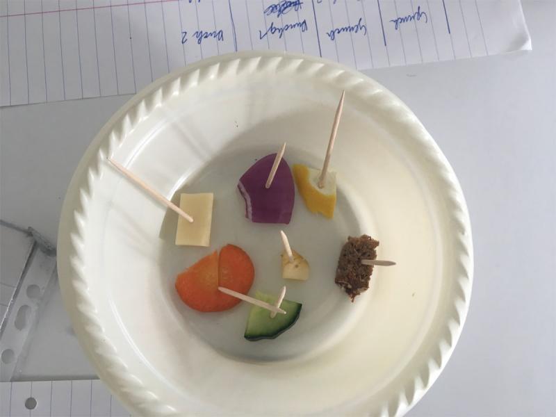 Geschmackstest NAWI-Labor